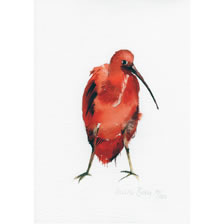 Red Bird. art%20prints