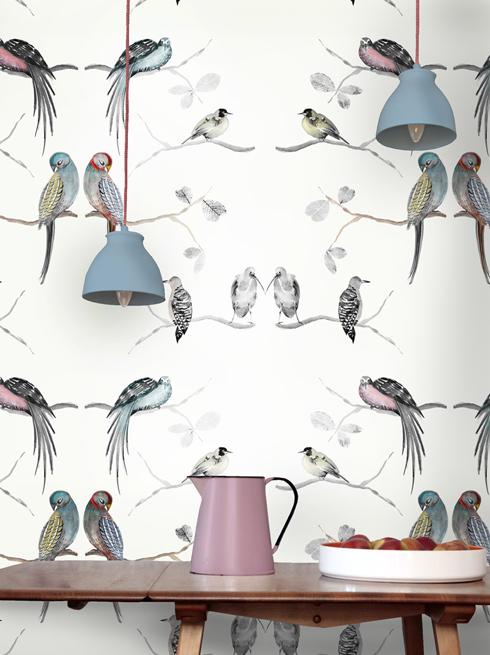 New Perched Birds Wallpaper